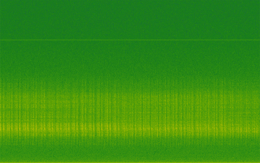 250 khz Ultrasound spectrogram 2016 (Image: Sonic Visualiser)